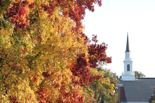 Trees in autumnal colors with a church