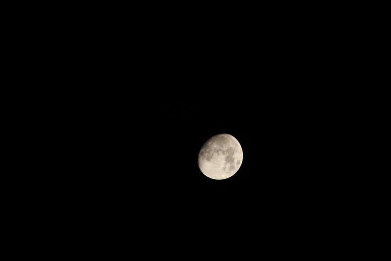 The moon waxing gibbous